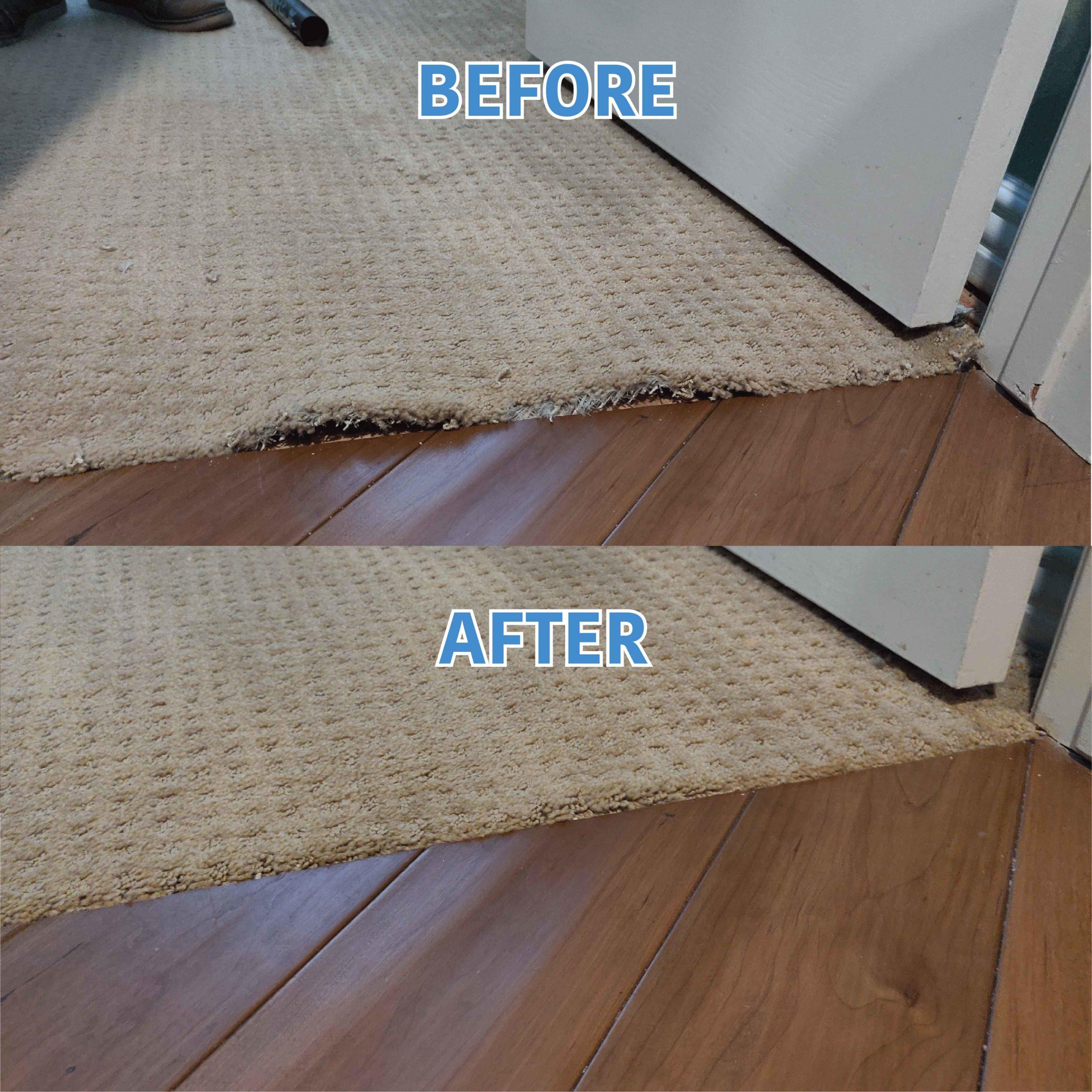 Carpet Transition Repair